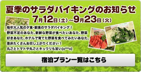 夏季のサラダバイキングのお知らせ:7月12日(土)〜9月23日(火)毎年大人気の夕食・朝食のサラダバイキング!野菜不足のあなた、新鮮な野菜が食べたいあなた、野菜好きあなた、ホテルで育てた野菜を食べてみたいあなた、是非たくさんお召し上がりください!丸ごとトマトや丸ごとキュウリも旨い(o^^o)/宿泊プラン一覧はこちら